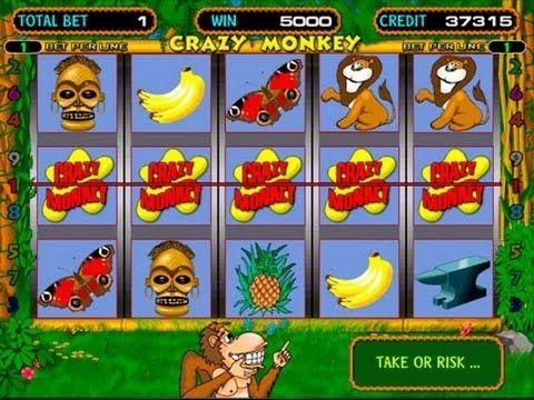 Игровой автомат Island of Monkey