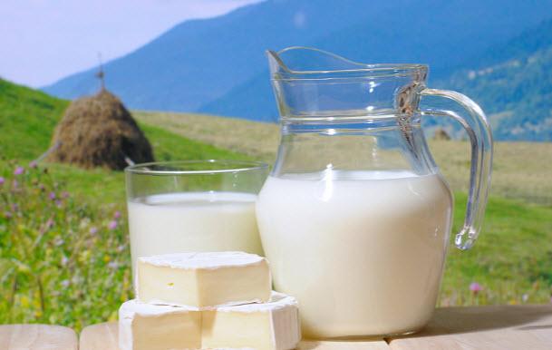 Молоко. Польза и вред
